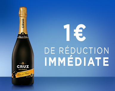 WEBCOUPON IA CRUZ ESPUMANTE 20